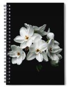 Narcissus The Breath Of Spring Spiral Notebook