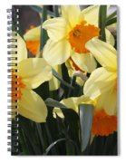 Narcissus Fortissimo Spiral Notebook