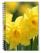 Narcissus Meadows Spiral Notebook