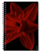 Narcissus Red Flower Square Spiral Notebook