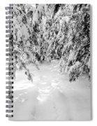 Narniaesque Spiral Notebook