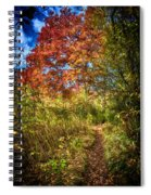 Narrow Is The Path Spiral Notebook
