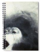 Nasa Chimpanzee, 1961 Spiral Notebook