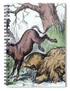 Nast: Democratic Donkey Spiral Notebook
