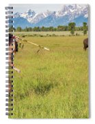 Native American Darcy 3 Spiral Notebook