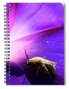Native Bee On A Purple Flower Spiral Notebook