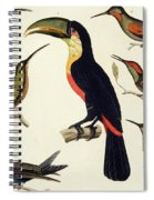Native Birds, Including The Toucan From The Amazon, Brazil Spiral Notebook