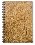 Natural Abstracts - Elaborate Shapes And Patterns In The Golden Grass Spiral Notebook