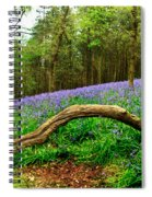 Natural Arch And Bluebells Spiral Notebook