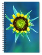 Natural Art Spiral Notebook