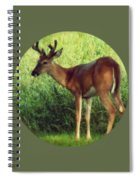 Natural Beauty - Original Version Spiral Notebook