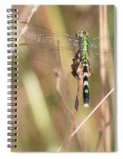 Natural Canvas With Dragonfly Spiral Notebook