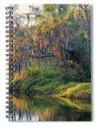 Natural Florida Landscape Spiral Notebook