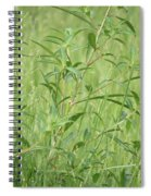 Natural Green Screen Spiral Notebook