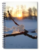 Natural Ice Animals In Winter Spiral Notebook