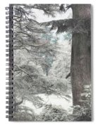 Natural Magnetism. Shabby Chic Collection Spiral Notebook