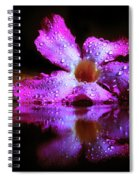 Natural Mirror  Spiral Notebook