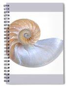 Natural Nautilus Seashell On White Spiral Notebook