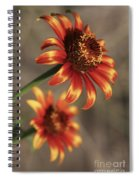 Natural Posing Beauty Spiral Notebook