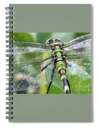 Natural Stained Glass Spiral Notebook