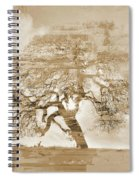 Natural Tree Spiral Notebook