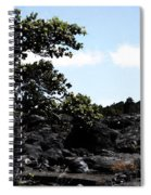 Nature 63 Spiral Notebook
