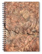 Nature Abstract - Cracked Spiral Notebook