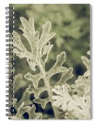 Nature Abstract 3 Spiral Notebook