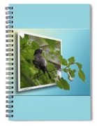 Nature Bird Spiral Notebook