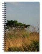 Nature Bonzai In The Evening Sun Spiral Notebook
