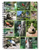 Nature Collage Spiral Notebook