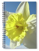 Nature Daffodil Flowers Art Prints Spring Nature Art Spiral Notebook