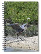 Nature In Florida Spiral Notebook