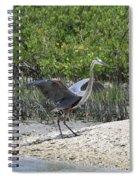 Nature In Florida Spiral Notebook