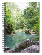 Nature Neto Spiral Notebook