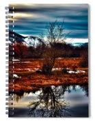 Nature Reflects Spiral Notebook