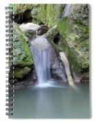 Nature Spring Scene Creek Spiral Notebook