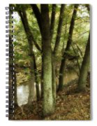 Nature Walk Along The Stream Spiral Notebook