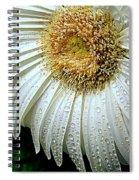 Nature When Wet Spiral Notebook