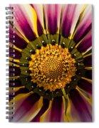 Natures Artwork Spiral Notebook
