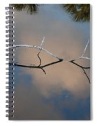 Natures Bridge In Color Spiral Notebook