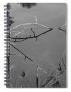 Natures Bridge Spiral Notebook