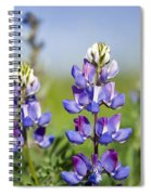 Natures Candy Spiral Notebook