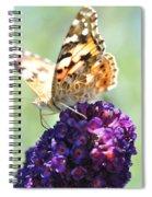 Nature's Candy Shop Spiral Notebook