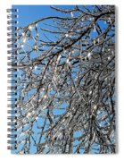 Natures Crystal Spiral Notebook