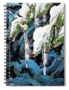Nature's Decorations Spiral Notebook