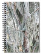 Natures Drapery At Okefenokee Swamp Spiral Notebook