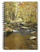 Nature's Finest 5 - Ricketts Glen Spiral Notebook