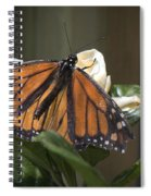 Nature's Glory Spiral Notebook