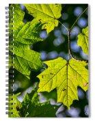 Natures Going Green Design Spiral Notebook